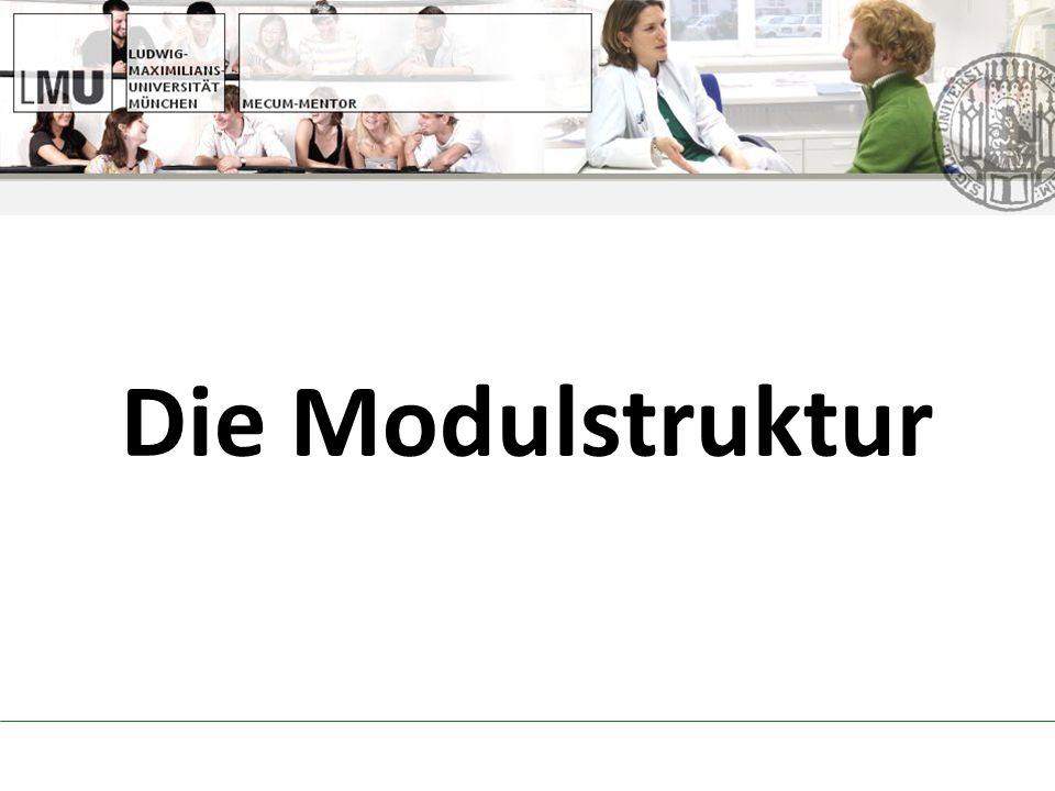 selbst organisiert Zusatzbescheinigung notwendig http://bvmd.de/ausland/scope AK Ausland mit Infoveranstaltung Sprachkurse: www.fremdsprachen.uni-muenchen.de www.medilingua.uni-muenchen.de Auslandsfamulaturen