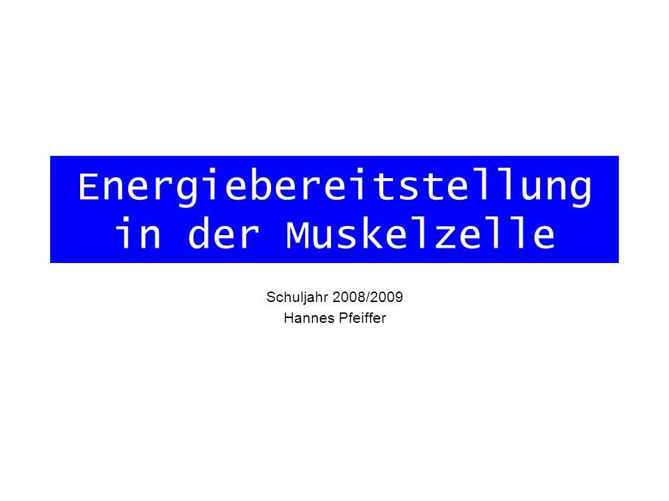 Energiebereitstellung in der Muskelzelle Schuljahr 2008/2009 Hannes Pfeiffer