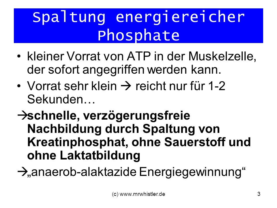 (c) www.mrwhistler.de4 Spaltung energiereicher Phosphate