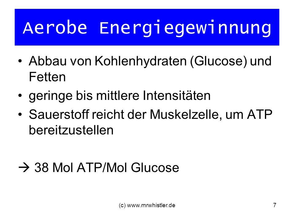 (c) www.mrwhistler.de7 Aerobe Energiegewinnung Abbau von Kohlenhydraten (Glucose) und Fetten geringe bis mittlere Intensitäten Sauerstoff reicht der M