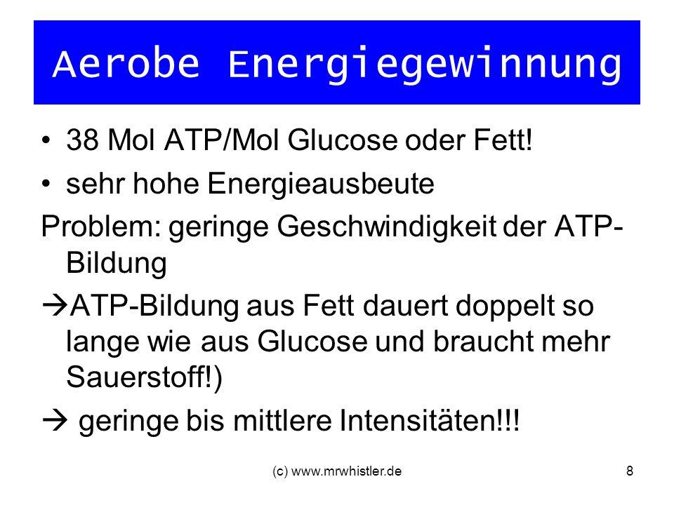 (c) www.mrwhistler.de8 Aerobe Energiegewinnung 38 Mol ATP/Mol Glucose oder Fett! sehr hohe Energieausbeute Problem: geringe Geschwindigkeit der ATP- B