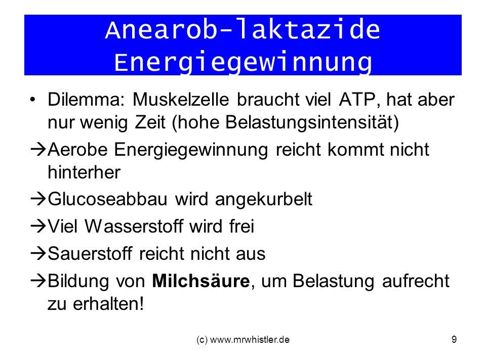 (c) www.mrwhistler.de10 Anaerob-laktazide Energiegewinnung geringe Energieausbeute (2 Mol ATP/Mol Glucose) ABER: hohe ATP-Bildungsrate (= ATP wird doppelt so schnell gebildet wie bei aerober Energiegewinnung aus Glucose) Problem: Laktatbildung!