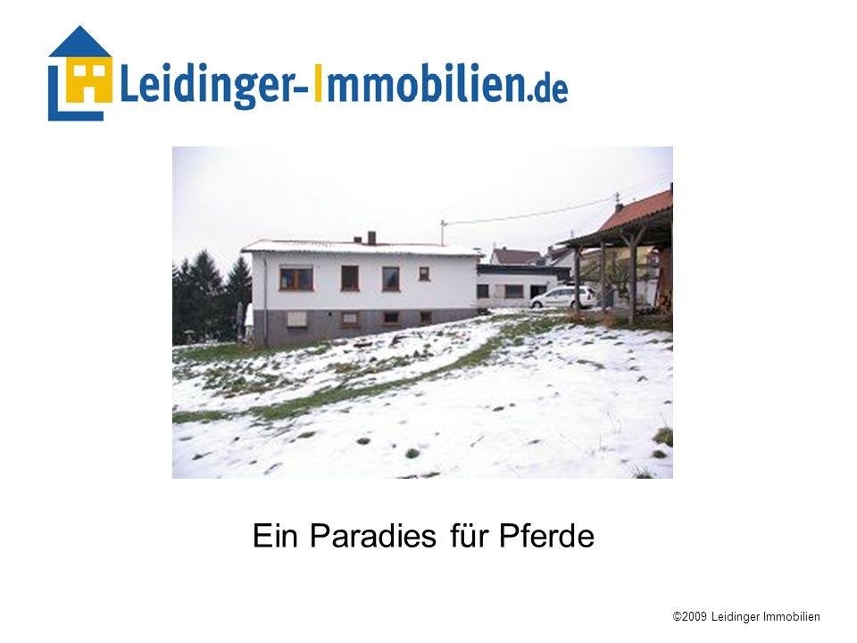 Ein Paradies für Pferde ©2009 Leidinger Immobilien