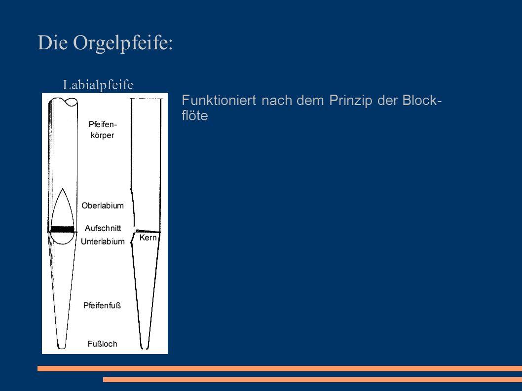 Die Orgelpfeife: Labialpfeife Funktioniert nach dem Prinzip der Block- flöte