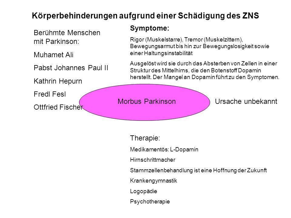 Morbus Parkinson Symptome: Rigor (Muskelstarre), Tremor (Muskelzittern), Bewegungsarmut bis hin zur Bewegungslosigkeit sowie einer Haltungsinstabilitä