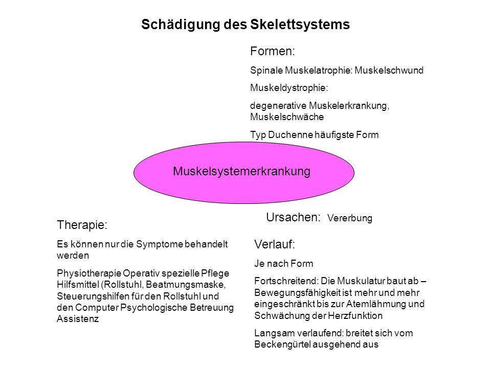Schädigung des Skelettsystems Muskelsystemerkrankung Formen: Spinale Muskelatrophie: Muskelschwund Muskeldystrophie: degenerative Muskelerkrankung, Mu