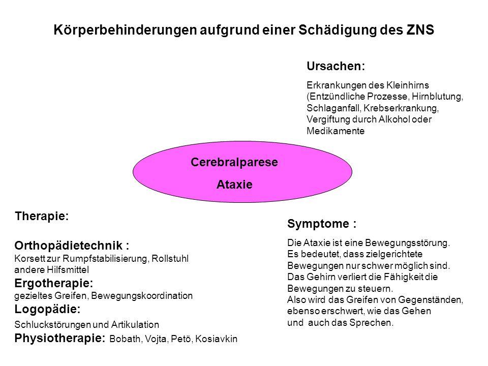 Körperbehinderungen aufgrund einer Schädigung des ZNS Cerebralparese Ataxie Ursachen: Erkrankungen des Kleinhirns (Entzündliche Prozesse, Hirnblutung,