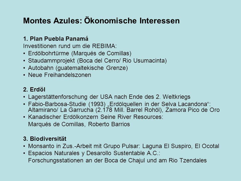 Montes Azules: Ökonomische Interessen 1. Plan Puebla Panamá Investitionen rund um die REBIMA: Erdölbohrtürme (Marqués de Comillas) Staudammprojekt (Bo