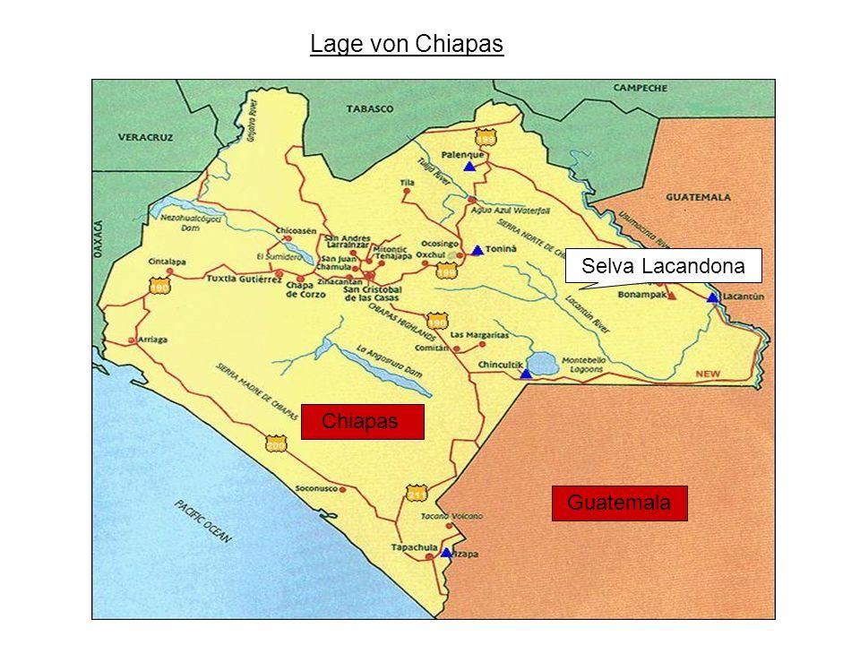 Montes Azules: Ökonomische Interessen 1.