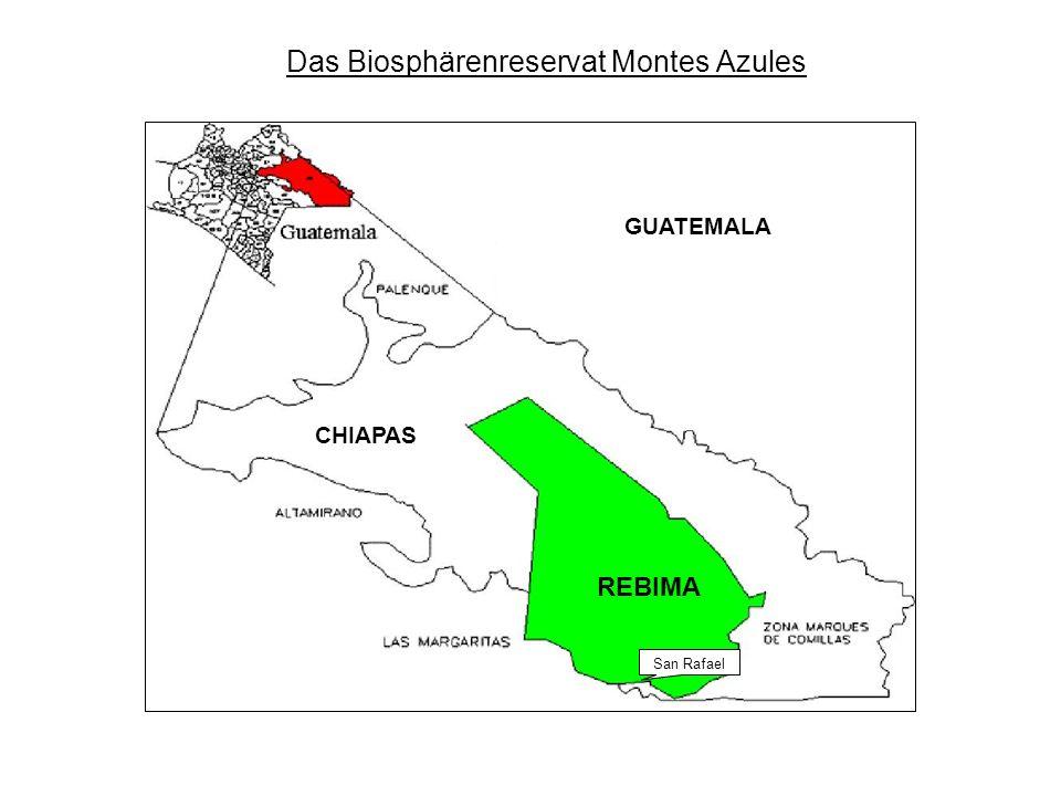 Montes Azules: Allgemeine Daten 3 zu unterscheidende Bereiche: 1.
