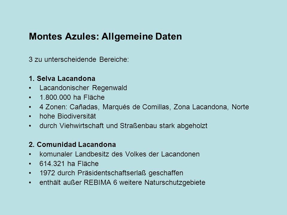 Montes Azules: Allgemeine Daten 3 zu unterscheidende Bereiche: 1. Selva Lacandona Lacandonischer Regenwald 1.800.000 ha Fläche 4 Zonen: Cañadas, Marqu