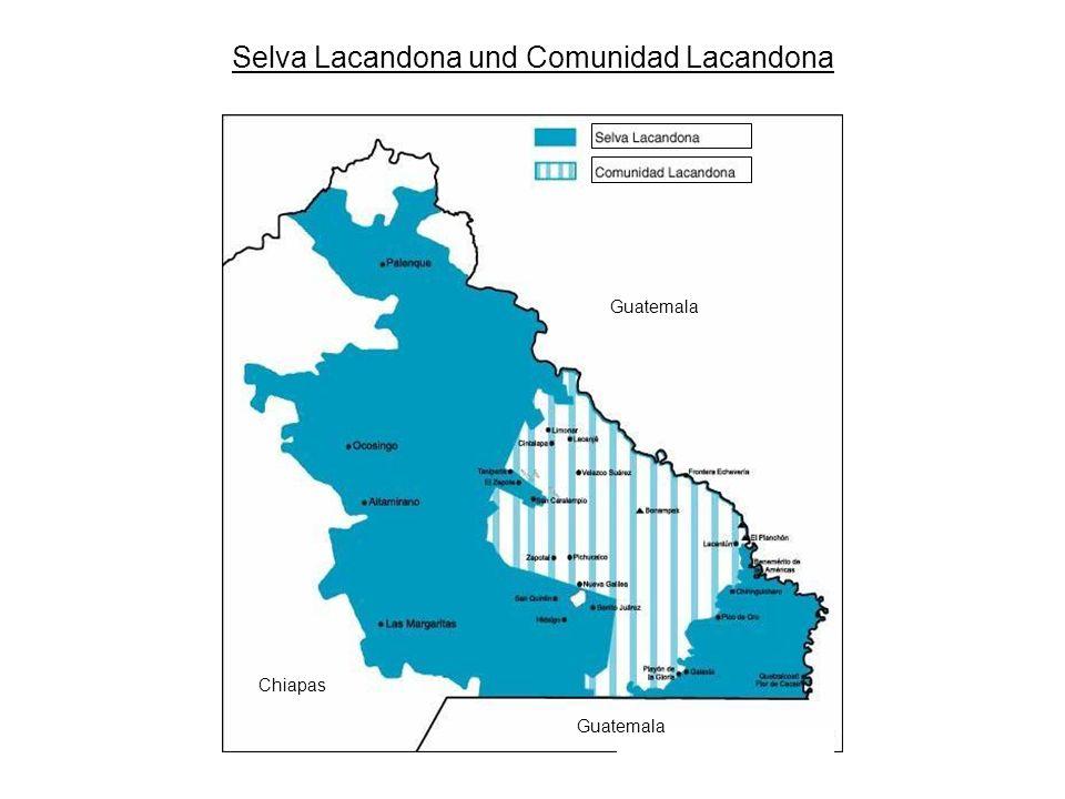 Selva Lacandona und Comunidad Lacandona Guatemala Chiapas Guatemala
