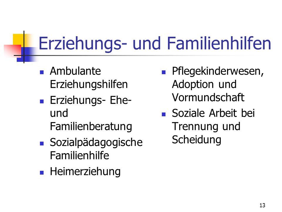 13 Erziehungs- und Familienhilfen Ambulante Erziehungshilfen Erziehungs- Ehe- und Familienberatung Sozialpädagogische Familienhilfe Heimerziehung Pfle
