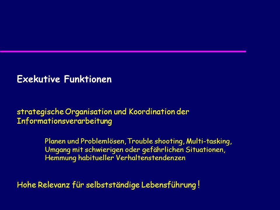 Exekutive Funktionen strategische Organisation und Koordination der Informationsverarbeitung Planen und Problemlösen, Trouble shooting, Multi-tasking,