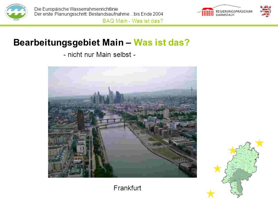 Die Europäische Wasserrahmenrichtlinie Der erste Planungsschritt: Bestandsaufnahme...bis Ende 2004 Bearbeitungsgebiet Main – Was ist das? BAG Main - W