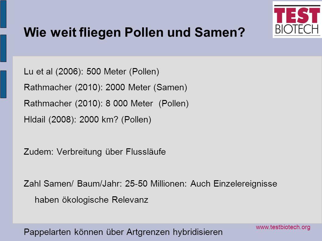 Wie weit fliegen Pollen und Samen? Lu et al (2006): 500 Meter (Pollen) Rathmacher (2010): 2000 Meter (Samen) Rathmacher (2010): 8 000 Meter (Pollen) H