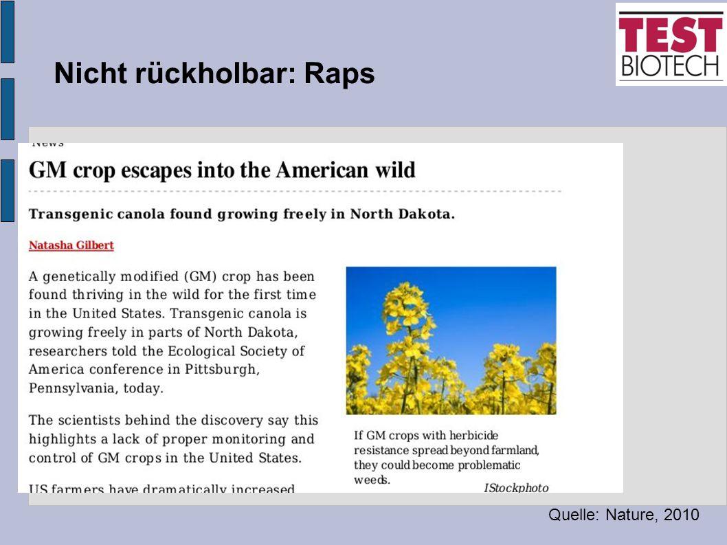 Nicht rückholbar: Raps Quelle: Nature, 2010