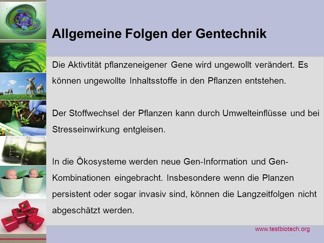 : Gentechnik arbeitet mit Bausteinen...