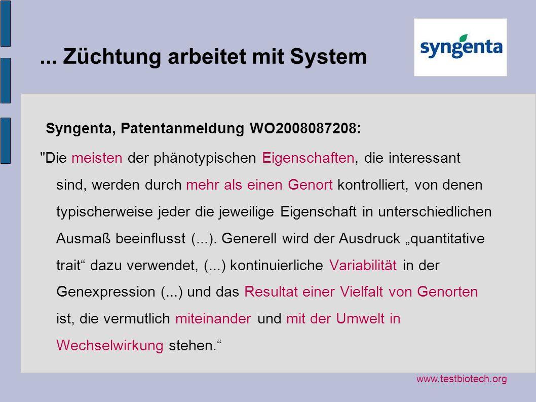 ... Züchtung arbeitet mit System Syngenta, Patentanmeldung WO2008087208: