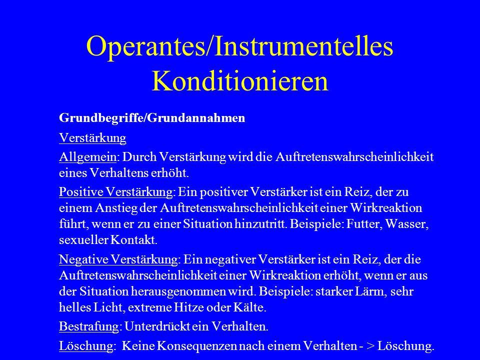 Operantes/Instrumentelles Konditionieren Grundbegriffe/Grundannahmen Verstärkung Allgemein: Durch Verstärkung wird die Auftretenswahrscheinlichkeit ei