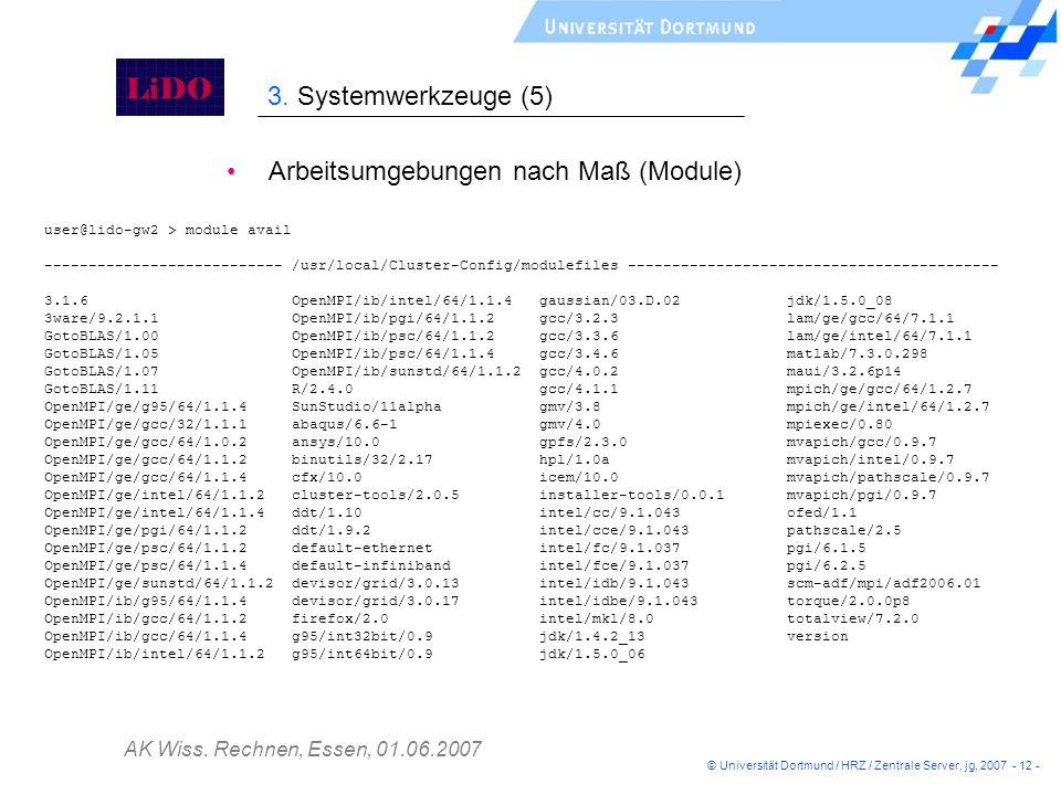 AK Wiss. Rechnen, Essen, 01.06.2007 © Universität Dortmund / HRZ / Zentrale Server, jg, 2007 - 12 - Arbeitsumgebungen nach Maß (Module) 3. Systemwerkz