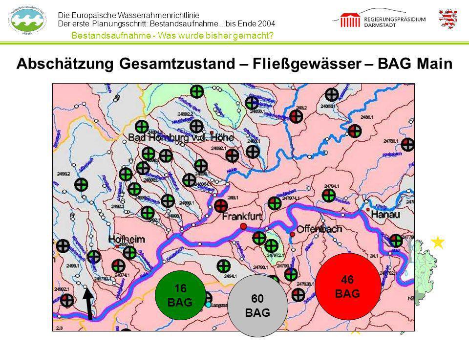 Die Europäische Wasserrahmenrichtlinie Der erste Planungsschritt: Bestandsaufnahme...bis Ende 2004 Abschätzung Gesamtzustand – Fließgewässer – BAG Mai