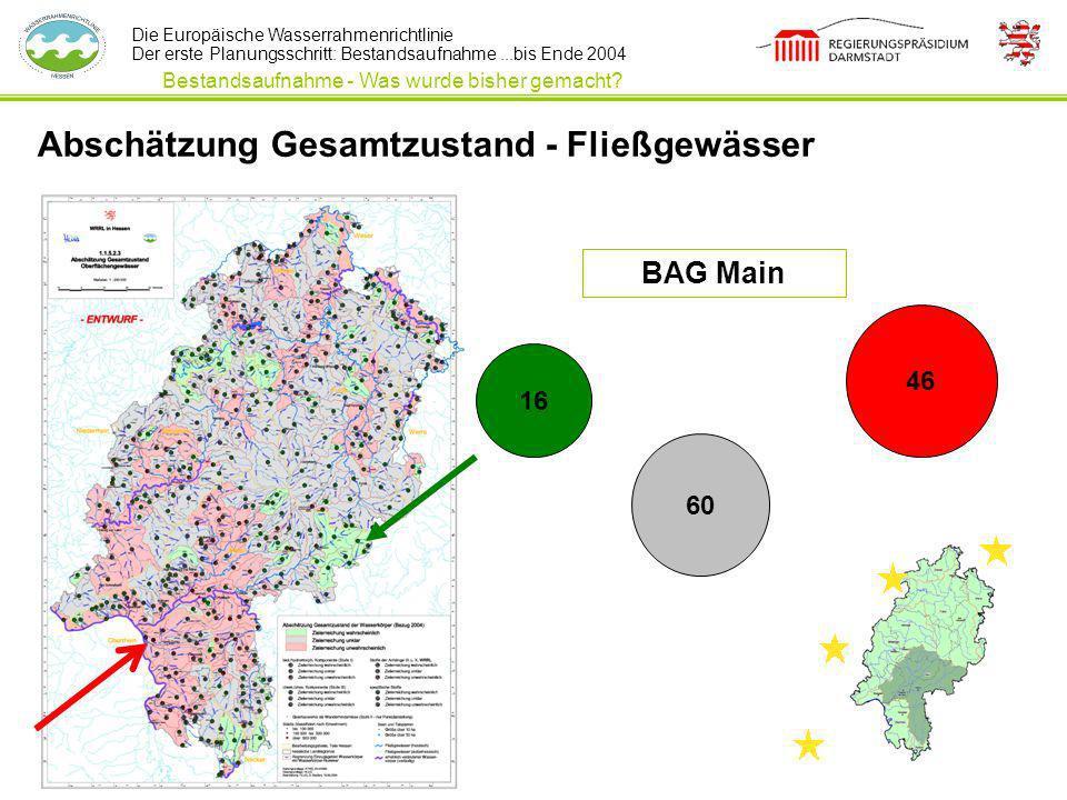 Die Europäische Wasserrahmenrichtlinie Der erste Planungsschritt: Bestandsaufnahme...bis Ende 2004 Abschätzung Gesamtzustand - Fließgewässer Bestandsa