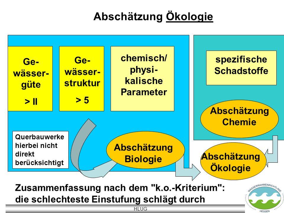HLUG Abschätzung Ökologie Ge- wässer- güte > II Ge- wässer- struktur > 5 chemisch/ physi- kalische Parameter spezifische Schadstoffe Abschätzung Biolo