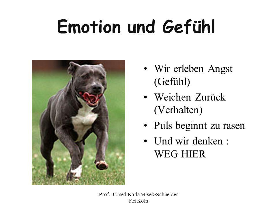 Prof.Dr.med.Karla Misek-Schneider FH Köln Emotion und Gefühl Wir erleben Angst (Gefühl) Weichen Zurück (Verhalten) Puls beginnt zu rasen Und wir denke