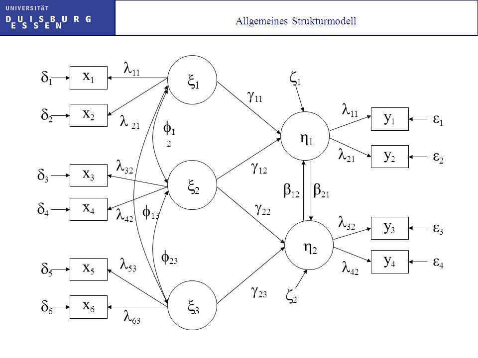Allgemeines Strukturmodell 1 x2x2 x1x1 x3x3 x4x4 x5x5 x6x6 11 21 2 3 53 32 63 42 13 1 2 23 1 2 3 4 5 6 1 11 2 12 22 23 y2y2 y1y1 y3y3 y4y4 ε1ε1 ε2ε2 ε
