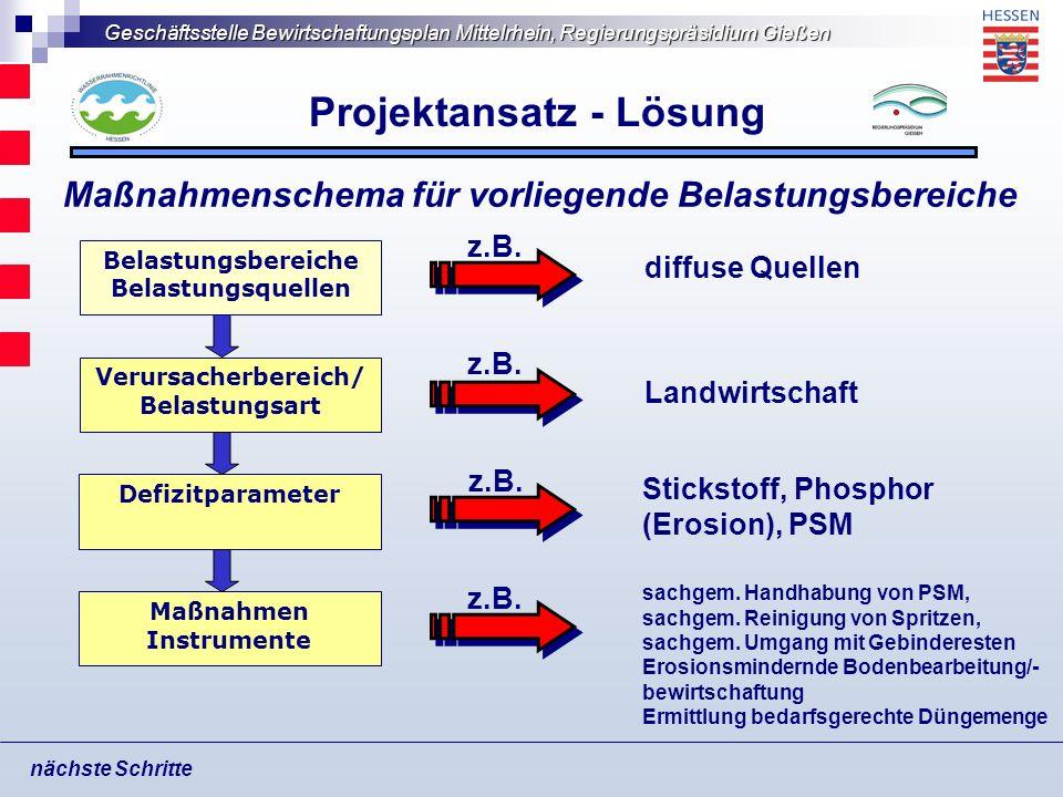 Geschäftsstelle Bewirtschaftungsplan Mittelrhein, Regierungspräsidium Gießen Projektansatz - Lösung nächste Schritte Verursacherbereich/ Belastungsart