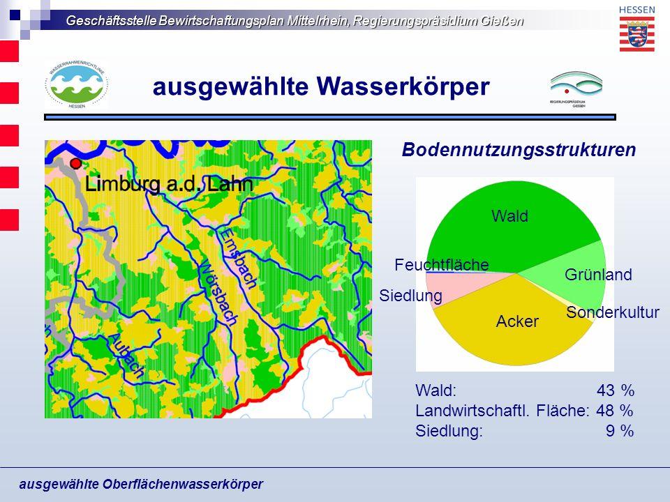 Geschäftsstelle Bewirtschaftungsplan Mittelrhein, Regierungspräsidium Gießen ausgewählte Oberflächenwasserkörper ausgewählte Wasserkörper Zielerreichung unwahrscheinlich hinsichtlich Struktur- u.
