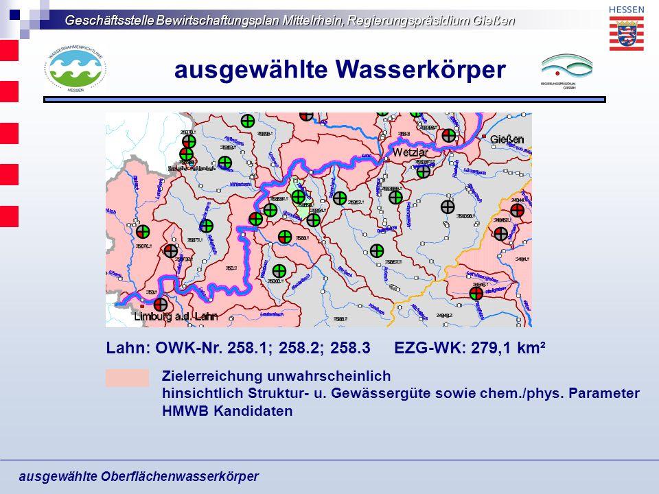 Geschäftsstelle Bewirtschaftungsplan Mittelrhein, Regierungspräsidium Gießen ausgewählte Oberflächenwasserkörper ausgewählte Wasserkörper Zielerreichu