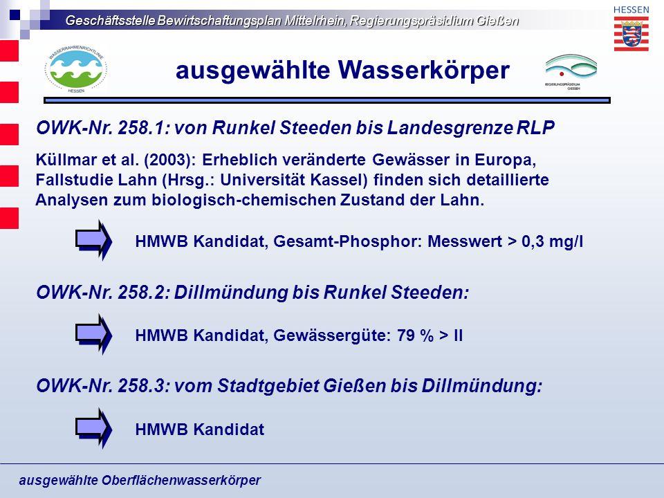 Geschäftsstelle Bewirtschaftungsplan Mittelrhein, Regierungspräsidium Gießen ausgewählte Oberflächenwasserkörper ausgewählte Wasserkörper OWK-Nr. 258.