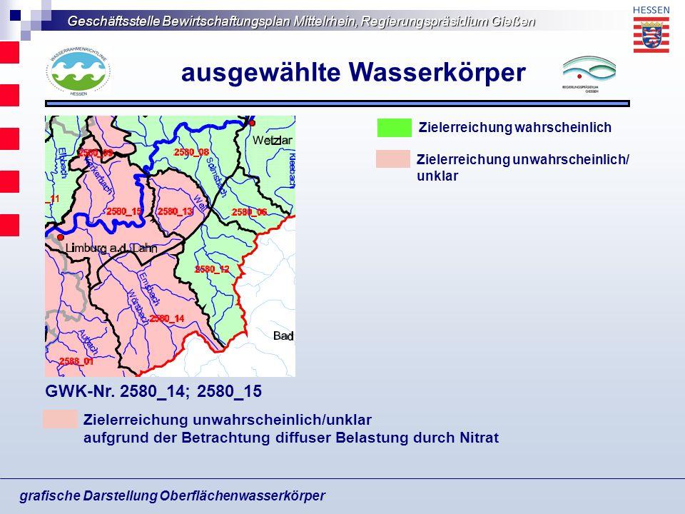 Geschäftsstelle Bewirtschaftungsplan Mittelrhein, Regierungspräsidium Gießen grafische Darstellung Oberflächenwasserkörper ausgewählte Wasserkörper Zi