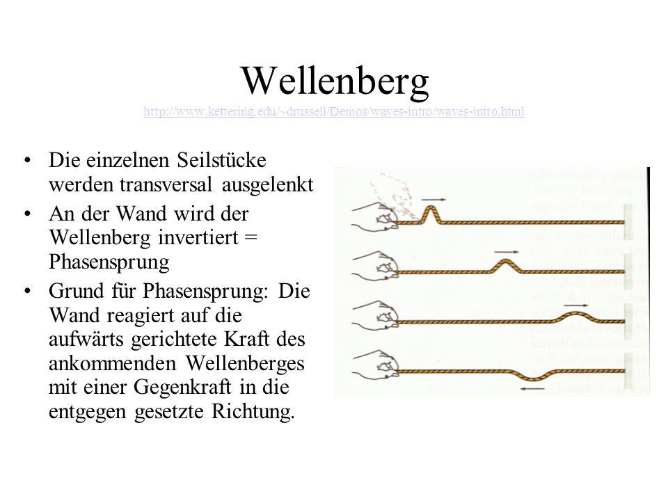 Longitudinale und transversale Wellen Longitudinalwelle: Die Auslenkung verläuft parallel zur Ausbreitungsrichtung der Welle Transversalwelle: Die Auslenkung verläuft senkrecht zur Ausbreitungsrichtung der Welle (siehe Wellenberg)