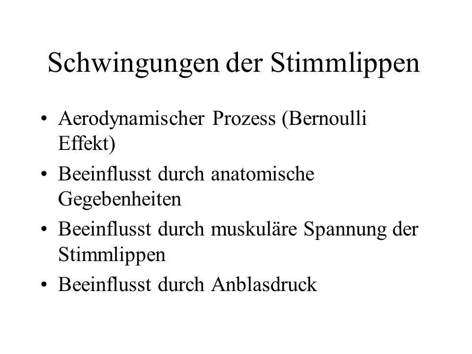 Lese-Rechtschreib Schwäche oder Störung.