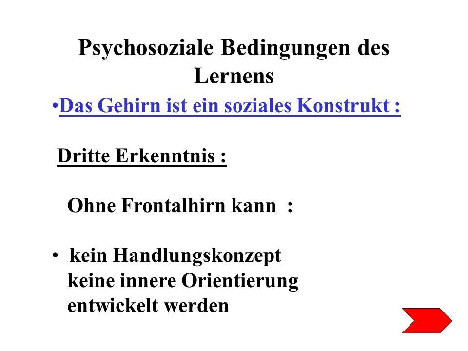 Psychosoziale Bedingungen des Lernens Das Gehirn ist ein soziales Konstrukt : Dritte Erkenntnis : Ohne Frontalhirn kann : kein Handlungskonzept keine