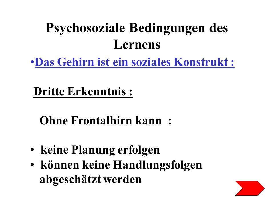 Psychosoziale Bedingungen des Lernens Das Gehirn ist ein soziales Konstrukt : Dritte Erkenntnis : Ohne Frontalhirn kann : keine Planung erfolgen könne
