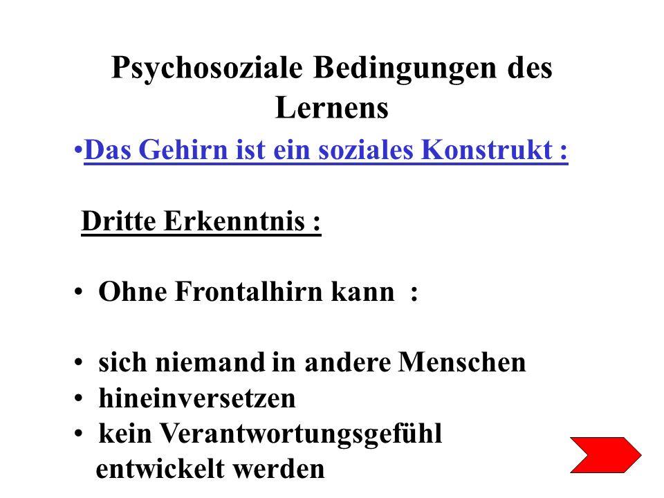 Psychosoziale Bedingungen des Lernens Das Gehirn ist ein soziales Konstrukt : Dritte Erkenntnis : Ohne Frontalhirn kann : sich niemand in andere Mensc