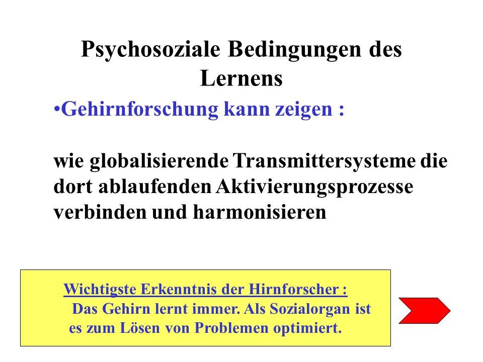 Psychosoziale Bedingungen des Lernens Gehirnforschung kann zeigen : wie globalisierende Transmittersysteme die dort ablaufenden Aktivierungsprozesse v