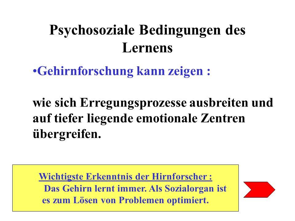 Psychosoziale Bedingungen des Lernens Gehirnforschung kann zeigen : wie sich Erregungsprozesse ausbreiten und auf tiefer liegende emotionale Zentren ü