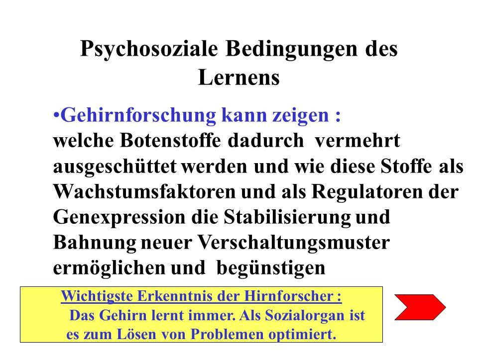 Psychosoziale Bedingungen des Lernens Gehirnforschung kann zeigen : welche Botenstoffe dadurch vermehrt ausgeschüttet werden und wie diese Stoffe als