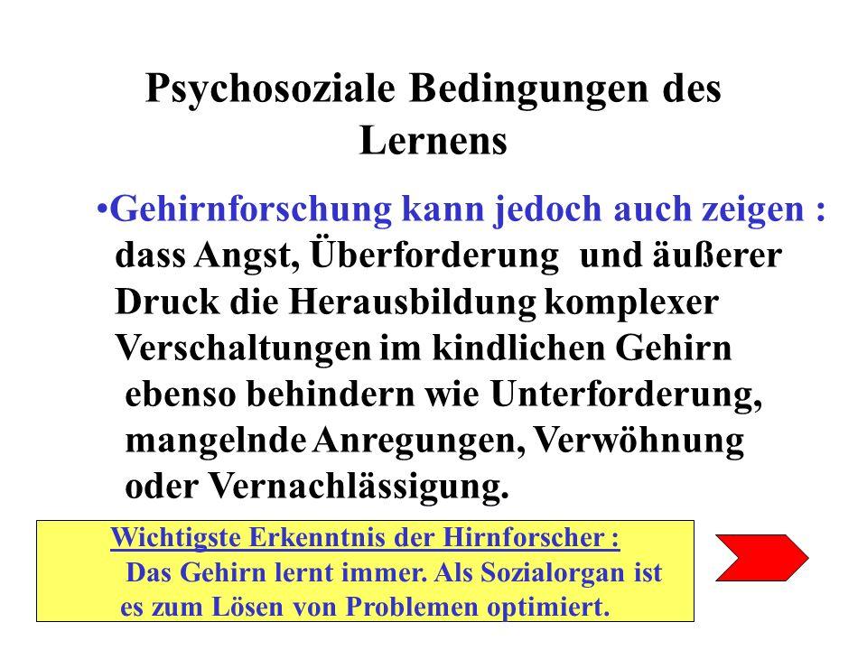 Psychosoziale Bedingungen des Lernens Gehirnforschung kann jedoch auch zeigen : dass Angst, Überforderung und äußerer Druck die Herausbildung komplexe