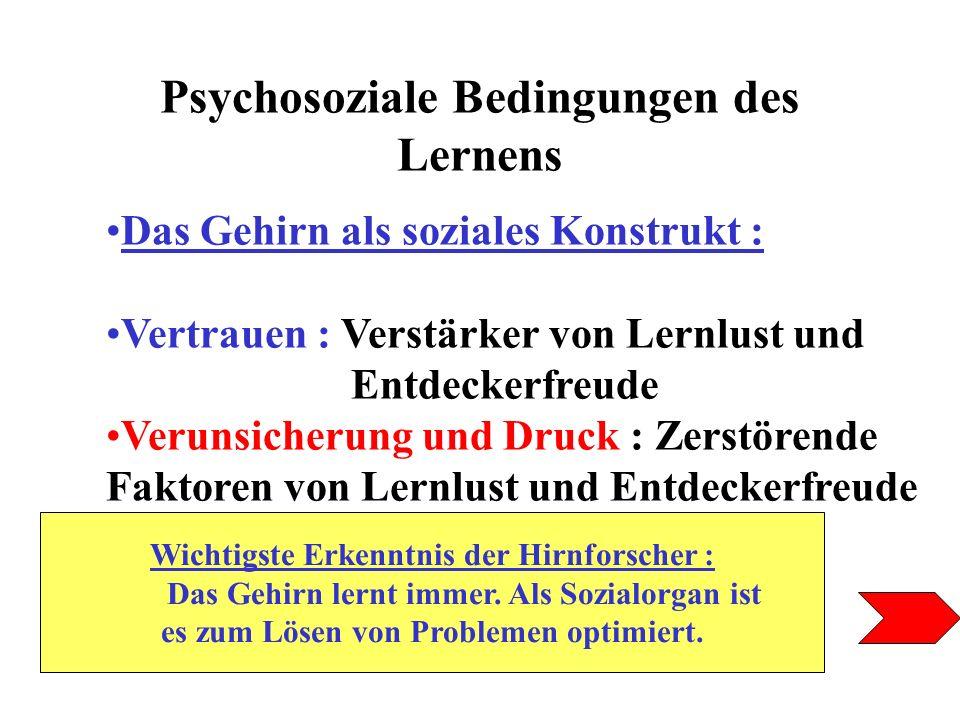 Psychosoziale Bedingungen des Lernens Das Gehirn als soziales Konstrukt : Vertrauen : Verstärker von Lernlust und Entdeckerfreude Verunsicherung und D