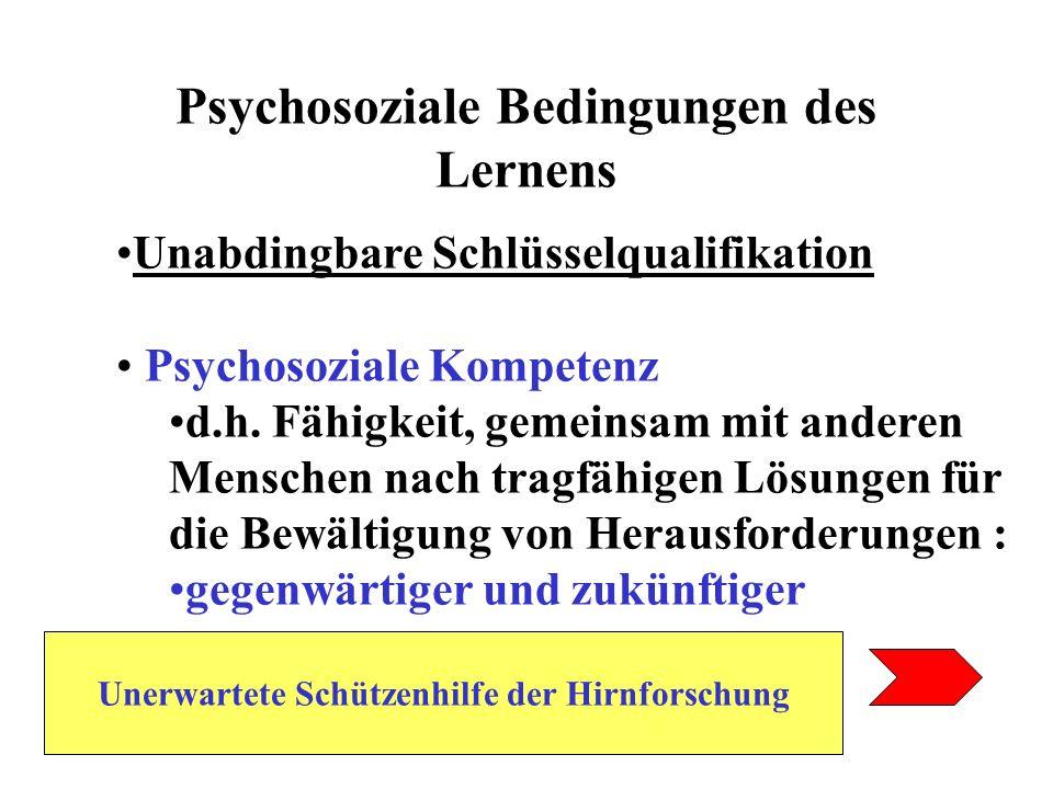 Psychosoziale Bedingungen des Lernens Unabdingbare Schlüsselqualifikation Psychosoziale Kompetenz d.h. Fähigkeit, gemeinsam mit anderen Menschen nach