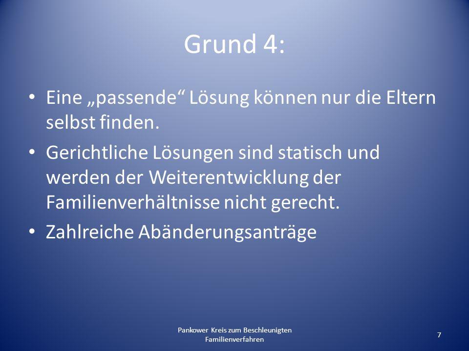 Pankower Kreis zum Beschleunigten Familienverfahren 28 2.