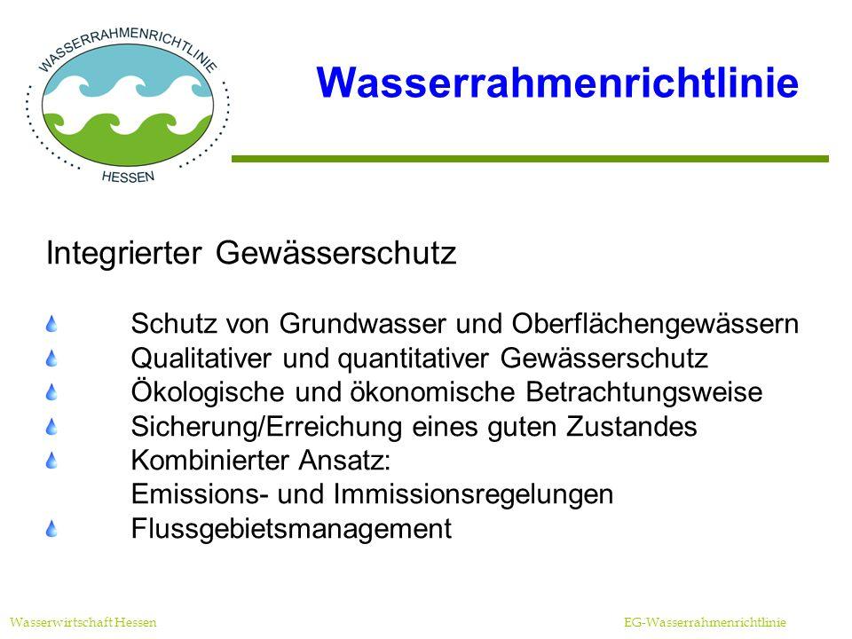 Überwachungsprogramme Wasserwirtschaft Hessen EG-Wasserrahmenrichtlinie Überblicksüberwachung (Routineüberwachung) Überwachung aller biologischen und chemisch- physikalischen Merkmale (Parameter und Häufigkeit von der WRRL vorgegeben) operative Überwachung Überwachung derjenigen Merkmale, die in einem Wasserkörper relevant sind (Zielerreichung unklar oder unwahrscheinlich) Überwachung zu Ermittlungszwecken Anlassbezogen, z.