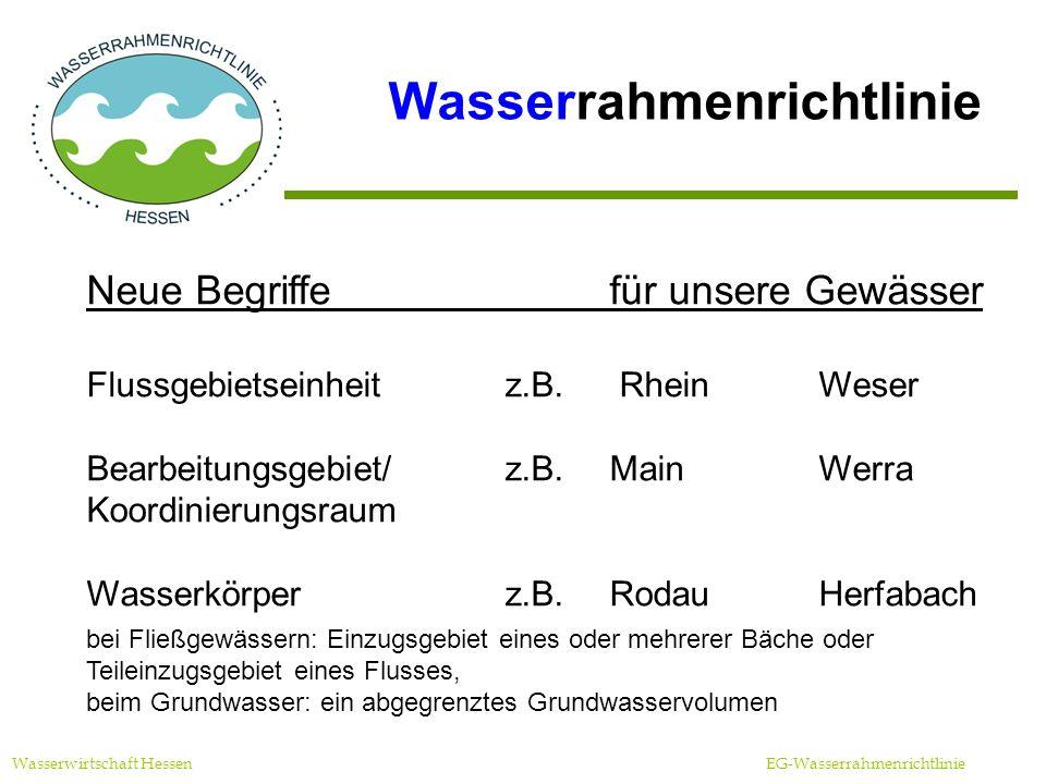 Maßnahmenprogramme Prinzipien Wasserwirtschaft Hessen EG-Wasserrahmenrichtlinie Auswahl der kosteneffizientesten Maßnahmen Auswahl der besten (verfügbaren) Instrumente Anwendung von Ausnahmen nur in begründeten Einzelfällen Aufstellung in Absprache mit den Betroffenen durch Behörden