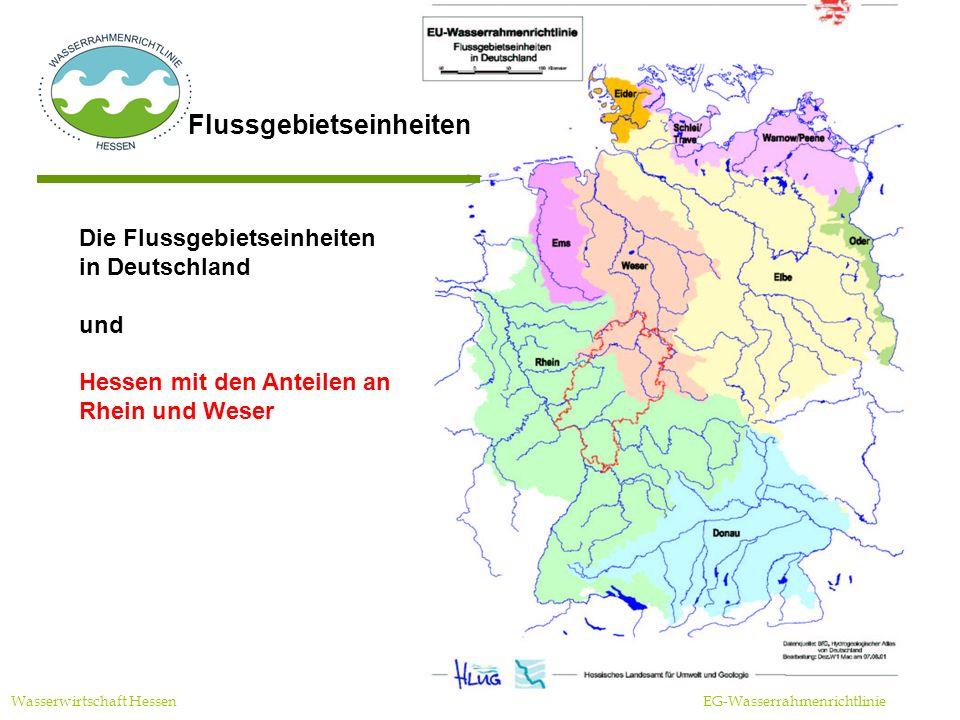 Zyklus der WRRL Wasserwirtschaft Hessen EG-Wasserrahmenrichtlinie Umweltziele Maßnahmen Bestandsaufnahme/Überwachung